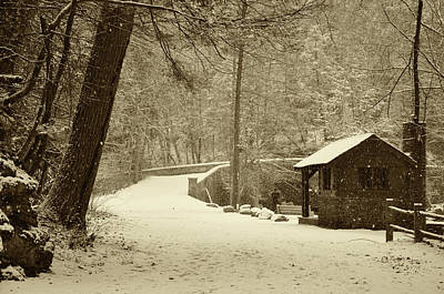 Forbidden Drive In Winter Art Print by Bill Cannon