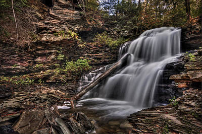 Ricketts Glen Photograph - Forces Of Nature by Evelina Kremsdorf