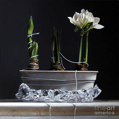 Painting - Forcing Amaryllis by Larry Preston