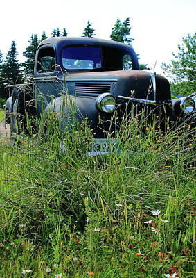 Photograph - Ford by Doug Mills