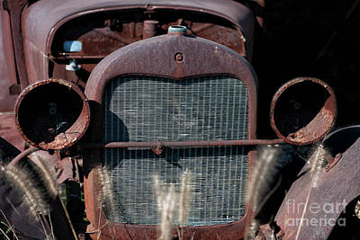 Photograph - Ford Model T by Dale Powell