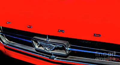 Photograph - Ford Mustang by David Millenheft