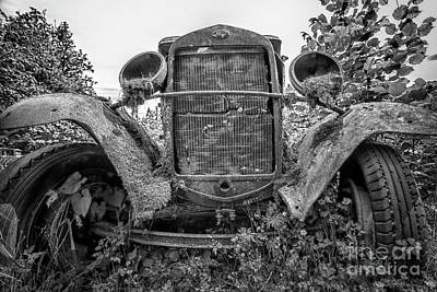 Photograph - Ford Power by Sonya Lang