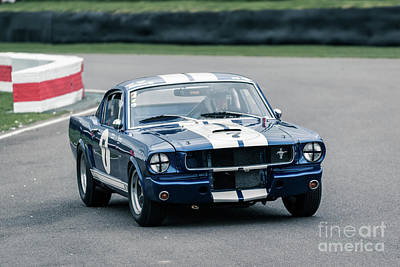 Photograph -  Ford Shelby Mustang Gt350 by Roger Lighterness