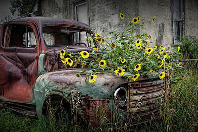Photograph - Ford Truck With Yellow Flowers Abandoned In The Ghost Town By Okaton South Dakota by Randall Nyhof