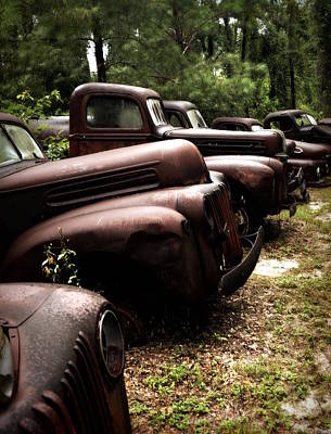 Photograph - Fords At Peace by Laurie Pike