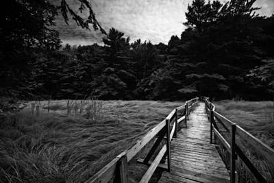Photograph - Fore River Marsh by Neil Shapiro