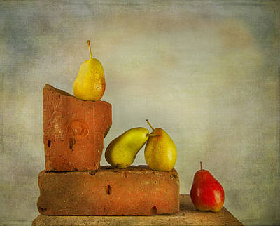 Photograph - Forelle Pears by Theresa Tahara