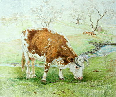 Pasture Scenes Drawing - Foreman's Favorite by Jill Iversen