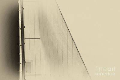 Photograph - Foresail Skutsje by Jan Brons