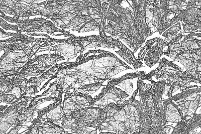 Forest Abstract 1 Original by Twenty Forever
