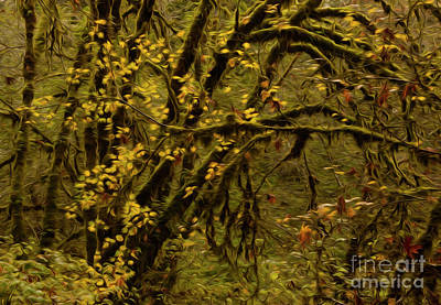 Photograph - Forest Abstract 1 by Vivian Christopher