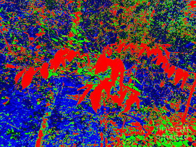 Forest Abstract Art Print by Chuck Taylor