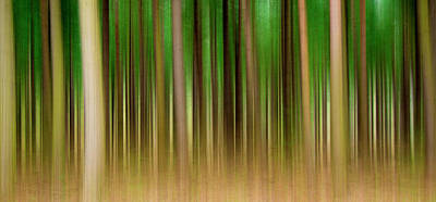 Browm Digital Art - Forest Abstract04 by Svetlana Sewell