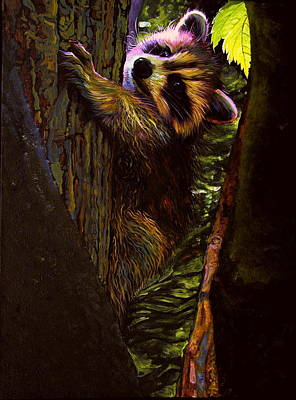 Raccoon Drawing - Forest Baby Raccoon by Kelly McNeil