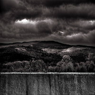 Photograph - Forest Behind The Wall by Bob Orsillo