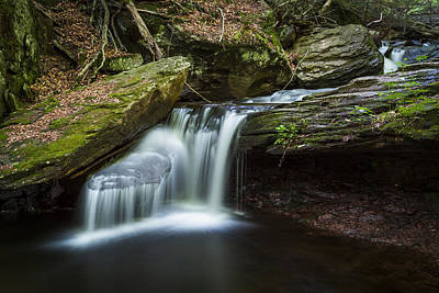 Ricketts Glen Photograph - Forest Breeze by Edgars Erglis