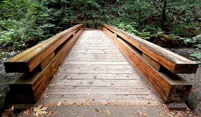Photograph - Forest Bridge by Nicholas Blackwell