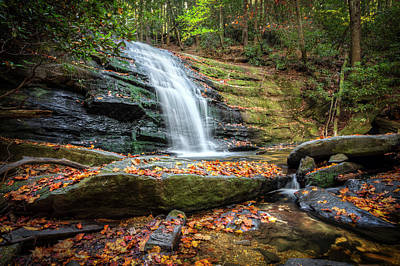 Photograph - Forest Cascades by Debra and Dave Vanderlaan