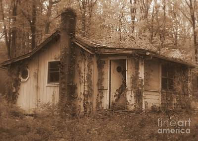 Photograph - Forest Cottage by Vicki Lynn Sodora