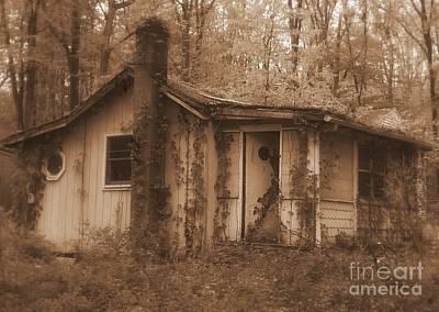 Photograph - Forest Cottage by Vicki Lynn Sodora