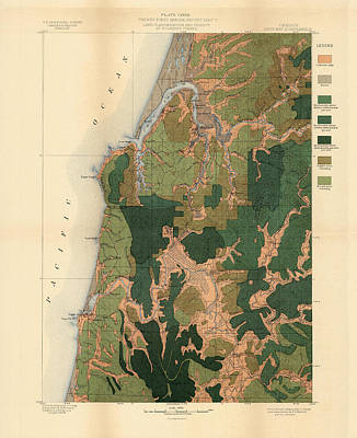 Royalty-Free and Rights-Managed Images - Forest cover map 1886-87 - Coos bay Quadrangle - Oregon - Geological map by Studio Grafiikka