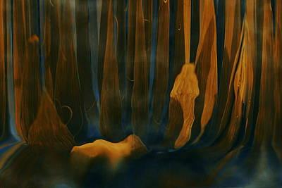 Forest Dreams Art Print by Linda Sannuti