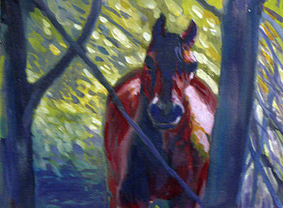 Painting - Forest Dweller by Elaine Hines