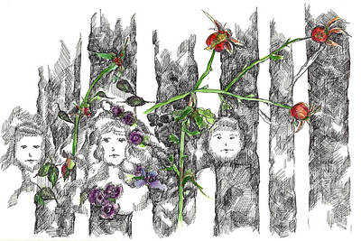Print featuring the drawing Forest Faces by Cathie Richardson
