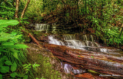 Print featuring the photograph Forest Falls by Christopher Holmes