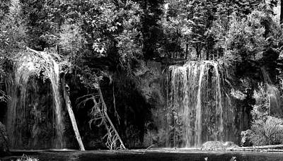 Photograph - Forest Falls by Kevin Munro