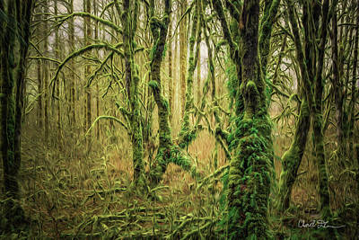 Photograph - Forest Ferns Digital Oil Pain by Charlie Duncan