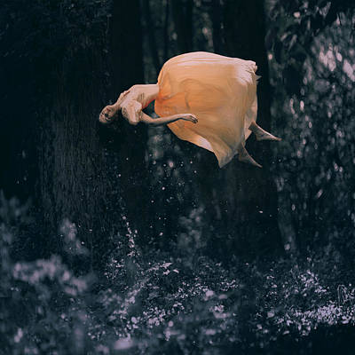 Nature Abstract Photograph - Forest Floating by Anka Zhuravleva