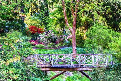 Photograph - Forest Footpath Bridge by John Haldane