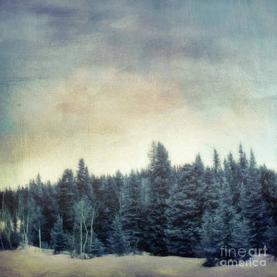 Forest For The Trees Art Print by Priska Wettstein