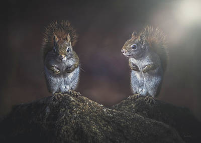 Photograph - Forest Friends  by Bob Orsillo