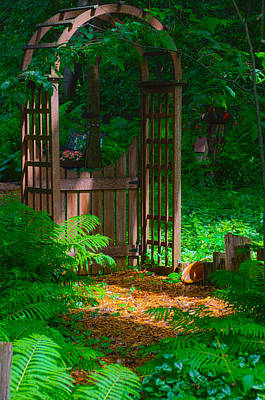 Photograph - Forest Gateway by Lynn Hansen