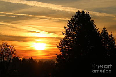 Digital Art - Forest Grove Valley Sunrise by Nick Gustafson