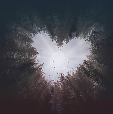 Digital Art - Forest Heart by Bekim Art