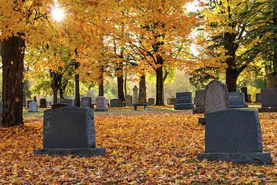 Forest Hill Autumn Morn Art Print
