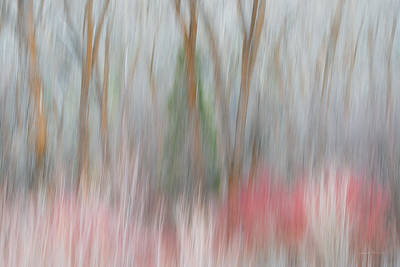 Impressionistic Landscape Photograph - Forest Impression 3 by Leland D Howard