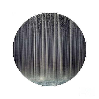 Forest In A Circle Art Print