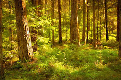 Painting - Forest In Sunlight by Lutz Baar