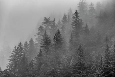 Alaska Photograph - Forest In The Clouds by Scott Slone