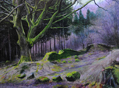 Forest In Wales Art Print by Harry Robertson
