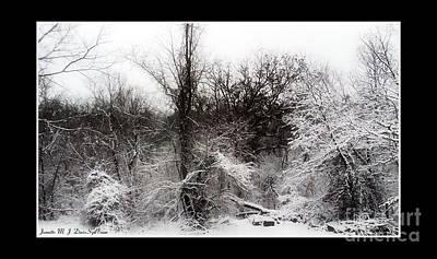 Forest In Winter Print by Jeanette M J Davis Spillman