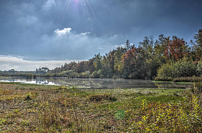 Forest Lake In Autumn Art Print