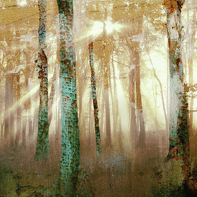 Sun Rays Mixed Media - Forest Light by Katherine Smit