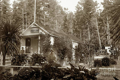 Photograph - Forest Lodge, Gate To 17 Mile Drive, Was Quarter Wm. Happ Gate Keeper 1901 by California Views Mr Pat Hathaway Archives