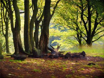 Clearing Painting - Forest Morning  by Philip Openshaw